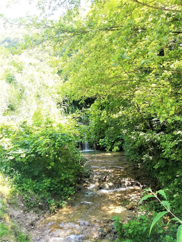 Cammintata Valle dei Mulini di Garda