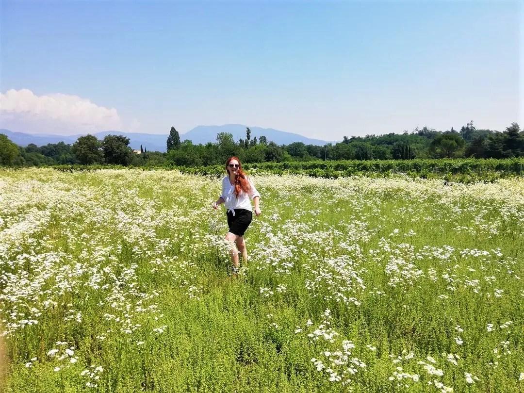 Valle dei Mulini a Garda: il percorso