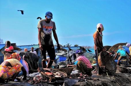 La pandémie réduirait de 10 ans le développement pour les pays pauvres