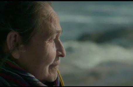 Le cinéma québecois à l'honneur