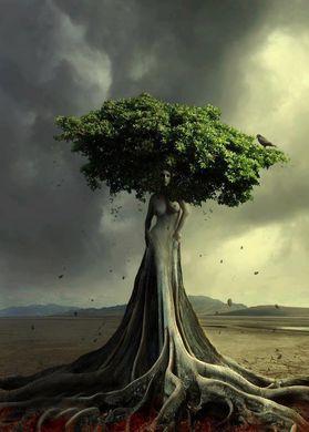 Radicarsi a Madre Terra