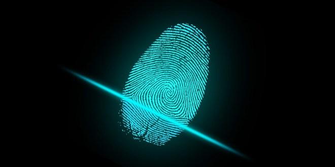 Un dealer du darknet trahi … par ses empreintes digitales