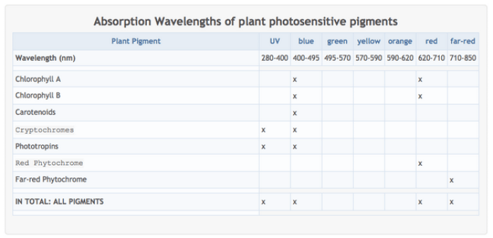 Summary table of the different photosensitive pigments found in plants and the light wavelength ranges that each is most effective at absorbing light