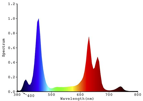 KINGBO dual optical lens series spectrum