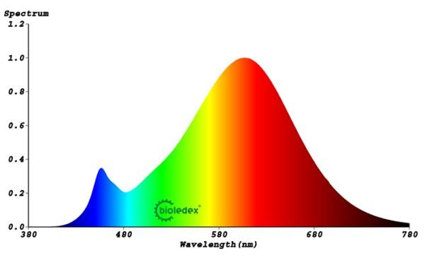 Lichtspektrum 15W Bioledex® Globe