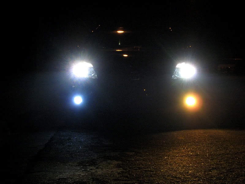 Fog Lights Bulbs