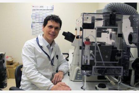 Successo italiano che vince l'Alzheimer: pubblicato su Nature Communications lo studio del Prof. Marcello D'Amelio del Campus bio-medico, CNR e ICCS