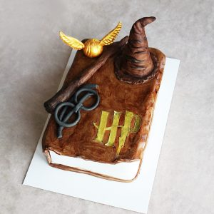 LE DOUX FRUIT PATISSERIE ARTISANALE MONTPELLIER _ GATEAU GRIMOIRE HARRY POTTER