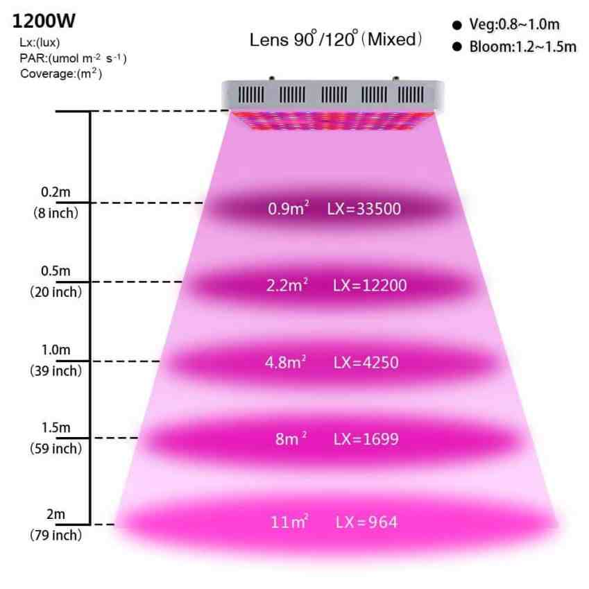 KingTM LED Grow Light Review 1200w Full Spectrum