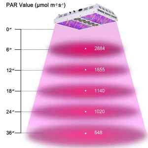 Viparspectra Review - Dimmable Series PAR1200 1200W (Full Spectrum) - LED Grow Light Review