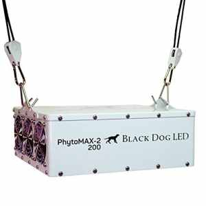Black Dog Review - PhytoMAX-2 200W LED Grow Light