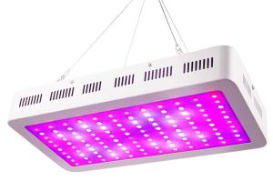 WAKYME 1200W LED Grow Light Review (Full Spectrum)