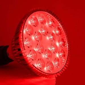 Wound Care Products Archives - LED Wellness Lighting