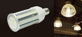 LED Retrofit Light Bulb