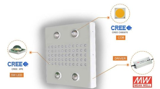 CREE High performance LEDs
