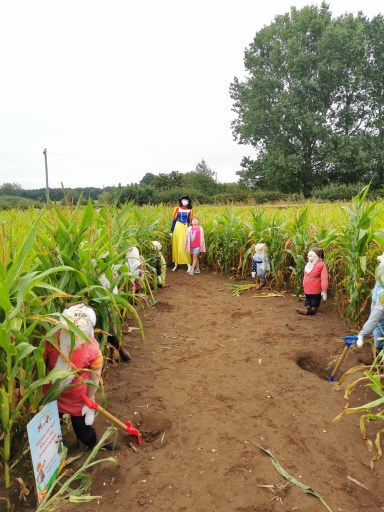 Great Yorkshire Maze child friendly maze