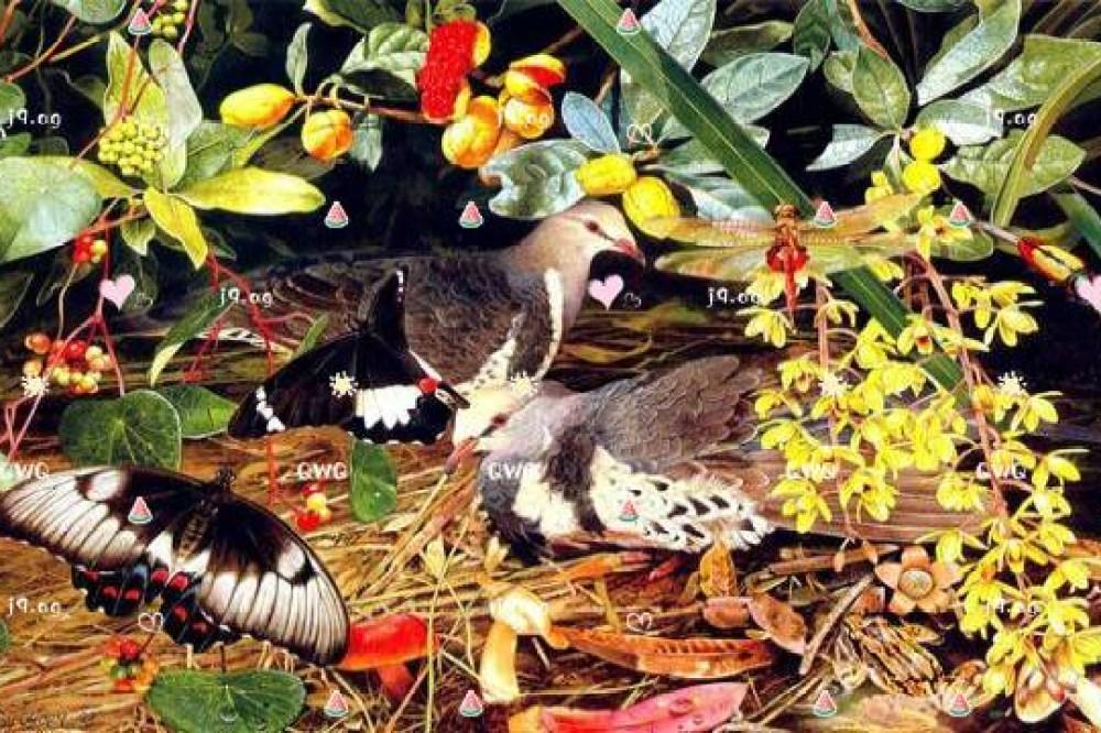 20170922Ayana_wedding-23- 婚攝, 婚攝Allen, 海外婚攝, 婚攝推薦, 婚禮攝影, 婚禮記錄, 婚紗攝影, 藝人婚禮,藝人婚攝, 自助婚紗, 婚紗攝影, 婚禮攝影推薦, 自助婚紗, 海外婚禮攝影, 海島婚禮攝影, 峇里島婚攝, 寒舍艾美婚禮攝影, 東方文華婚禮攝影, 君悅酒店婚禮攝影, 萬豪酒店婚禮攝影, 台北婚攝, 台中婚攝, 高雄婚攝, 婚攝推薦, 自助婚紗, 自主婚紗, 新生兒寫真, 孕婦寫真, 孕婦照, 孕婦, 寫真, 台中婚攝, 藝人婚禮紀錄, 藝人婚攝, 婚禮攝影, 台北婚禮紀錄, 藝人婚禮攝影, 自助婚紗, 婚紗攝影, 婚禮攝影推薦, 孕婦寫真, 自助婚紗, 新生兒寫真, 海外婚禮攝影, 海島婚禮, 峇里島婚攝, 寒舍艾美婚攝, 東方文華婚攝, 君悅酒店婚攝, 萬豪酒店婚攝, 君品酒店婚攝, 翡麗詩莊園婚攝, 翰品婚攝, 格萊天漾婚攝, 晶華酒店婚攝, 林酒店婚攝, 君品婚攝, 君悅婚攝, 翡麗詩婚禮攝影, 翡麗詩婚禮攝影, 文華東方婚攝