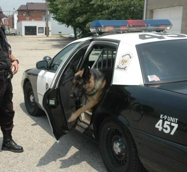 Police Dogs and How they Operate