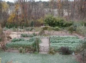 Garden view, autumn