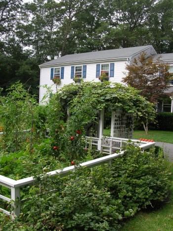 A small, productive garden