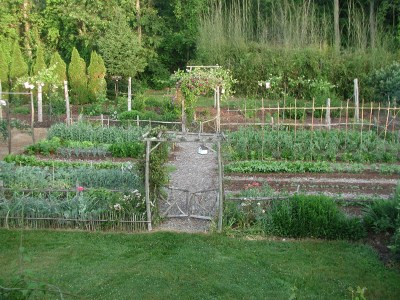 """Vegetable garden, kept """"weed-free"""" and fed by compost mulch"""