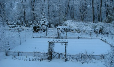 Vegetable garden in winter