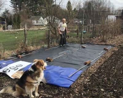 Tarped soil