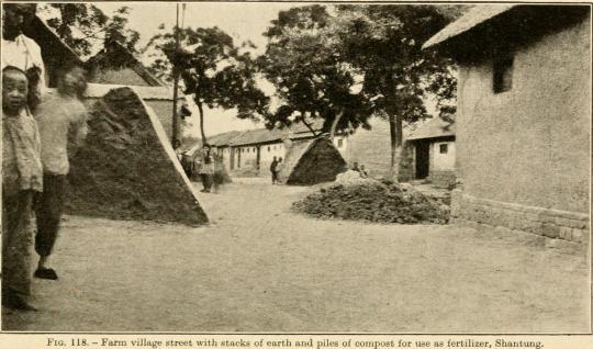 Human manure piles, China, 1900
