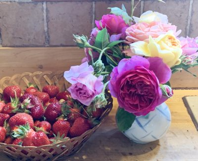Strawberries and roses