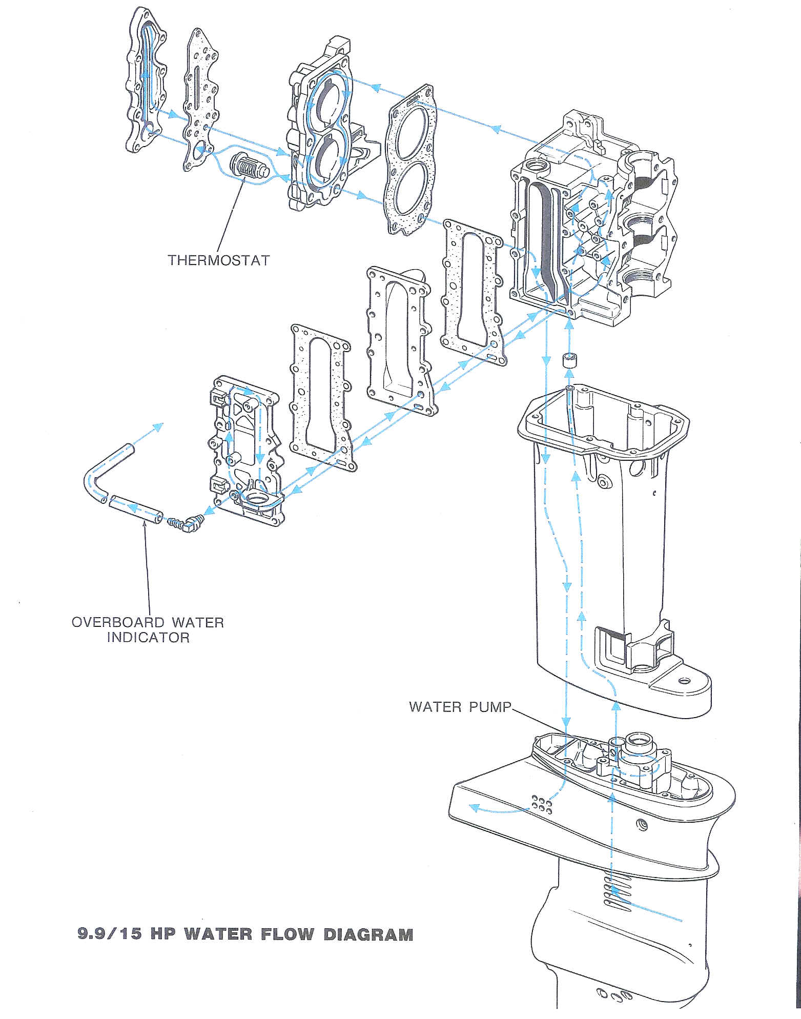 Wrg 15 Hp Evinrude Fuel Pump Diagram Wiring