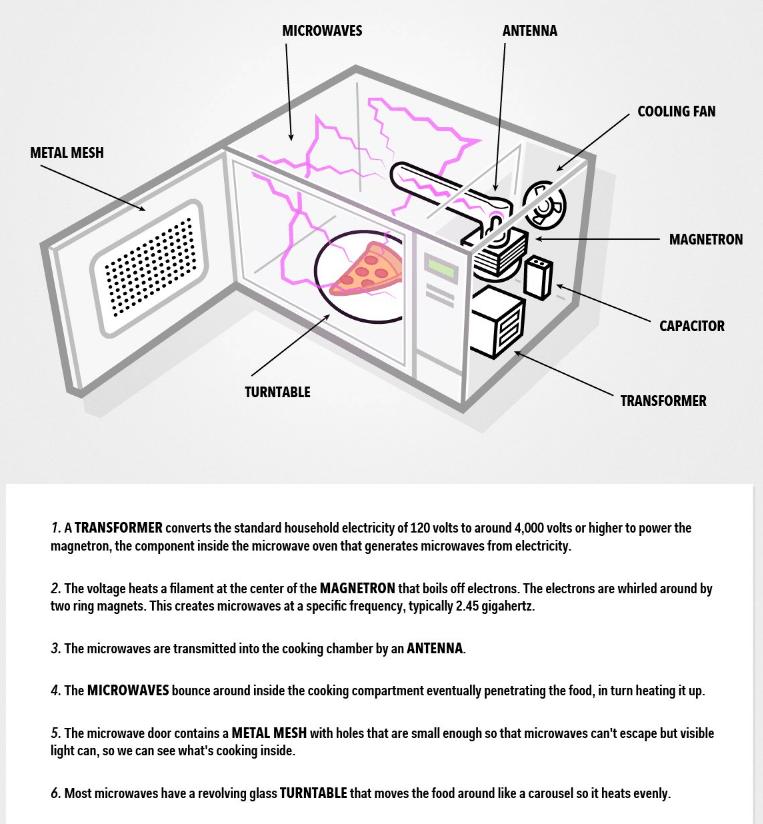 microwave repair in denver lee s