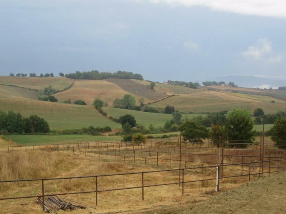 Ranch Ricavo