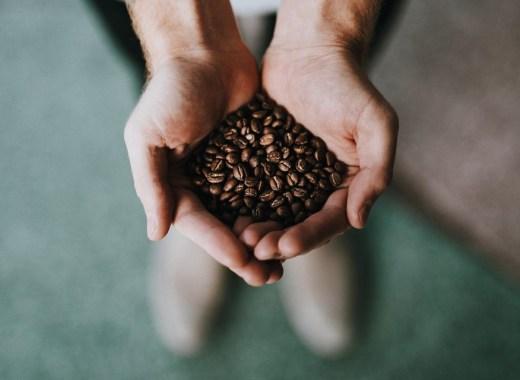 Ne jettez pas le marc de café