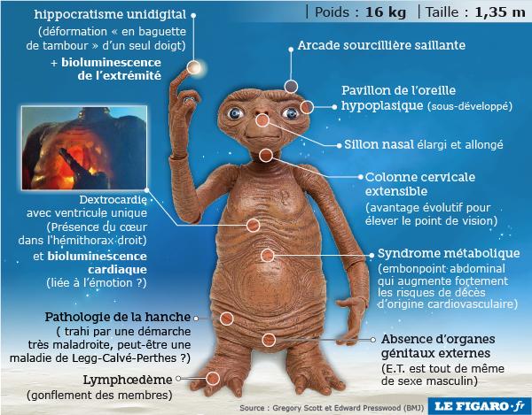 l'étrange anatomie de E.T. l'extraterrestre