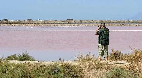 Salins d'Hyères. La société des Salins du Midi mit un terme à l'exploitation du sel en 1995. En 2001, lorsqu'elle voulut vendre à un promoteur immobilier désireux d'y construire un golf, le Conservatoire du littoral fit valoir son droit de préemption.
