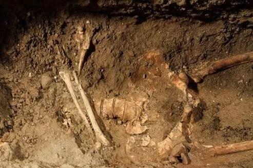 Le squelette de Lisa Gherardini, l'hypothétique modèle de Léonard de Vinci pour la Joconde.
