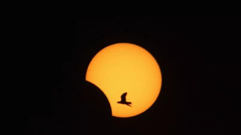 L'eclipse solaire totale a aussi pu être contemplée au Gabon, au Congo, en Ouganda et en Éthiopie. Elle a été partielle dans d'autres pays, comme ici au Liban.