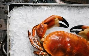 Crab at Le Fontane