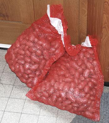 <Photo of French potatoes sold door-to-door.>