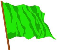 green flag copy
