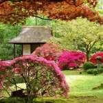 Un jardin japonais pour votre réception de mariage