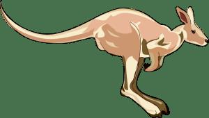 Anonymous_openclip.kangaroo