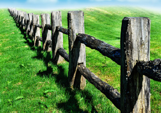 Old Wooden Fence At Green Field