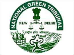 NGT seeks govt reply on plea against 13 cement firms