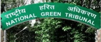No NOC for diesel vehicles which are more than 15 yrs old: NGT