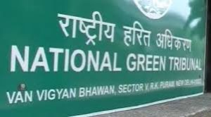 NGT upst over delay in dengue, chikungunya report