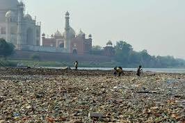 SC concerned over garbage dumped at landfill sites