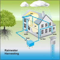 Rain-water-harvesting