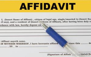 Format of Affidavit for No Dispute