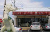 Dinosaur Store Cocoa Beach